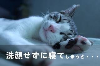 洗顔しないで寝る