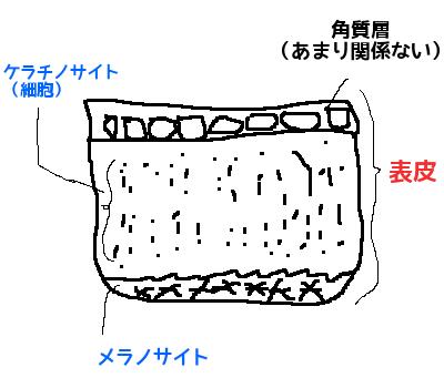ニキビ跡シミ色素沈着消す方法